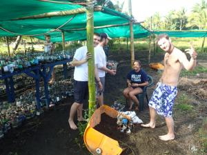 First day mucking in with the mangroves!