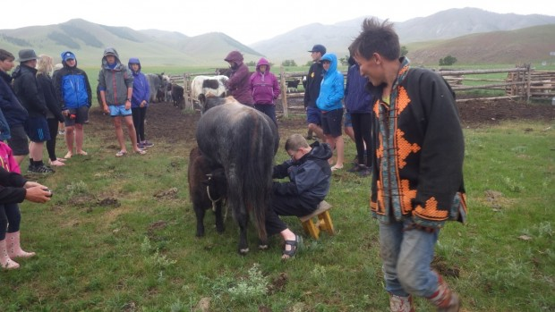 I managed to milk the yak (the milk was very sticky and sweet)